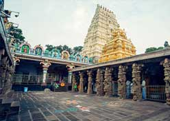 South India Karnataka Tour